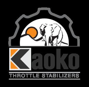 KAOKO CRUISE CONTROLS